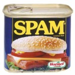 Forget Osama Execute the Spammers